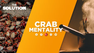 A group of crabs and one crab in a steaming pot with text overlay Crab Mentality.